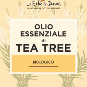 Ecomama_tea tree